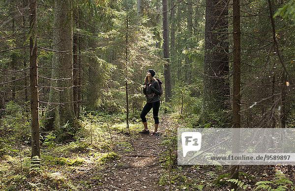 Frauen-Trekking durch den Wald  Helsinki  Finnland