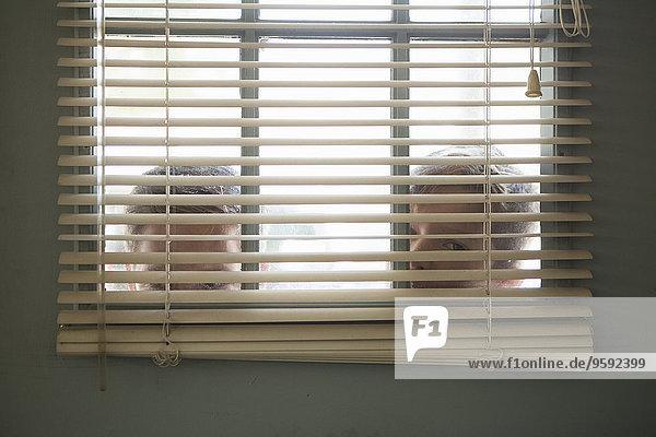 Zwei Jungen blicken durchs Fenster mit Jalousie