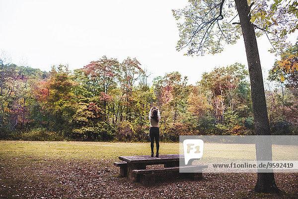 Rückansicht einer jungen Frau  die auf einer Picknickbank steht und den Herbstwald mit dem Smartphone fotografiert.