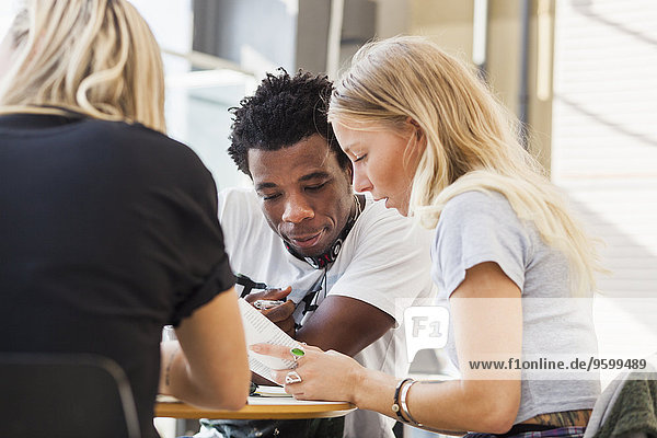 Multiethnic male and female friends studying at table in cafe