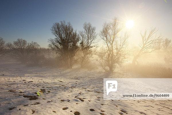 Winter Landschaft über Sonnenaufgang Kroatien