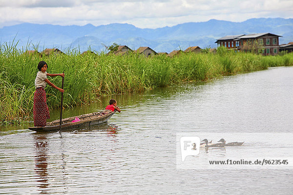 Myanmar  woman with child on boat and ducks on Inle Lake
