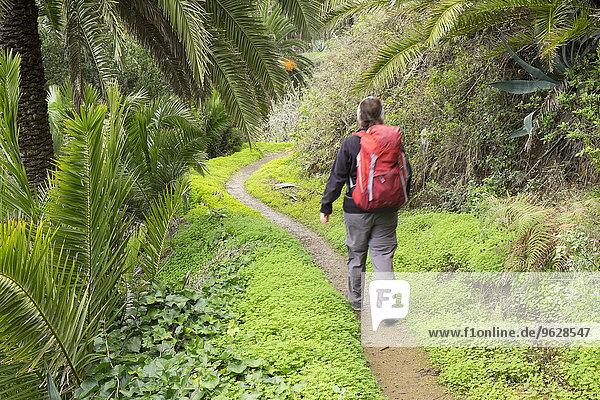 Spanien  Kanarische Inseln  La Gomera  Vallehermoso  Wanderer bei Epina
