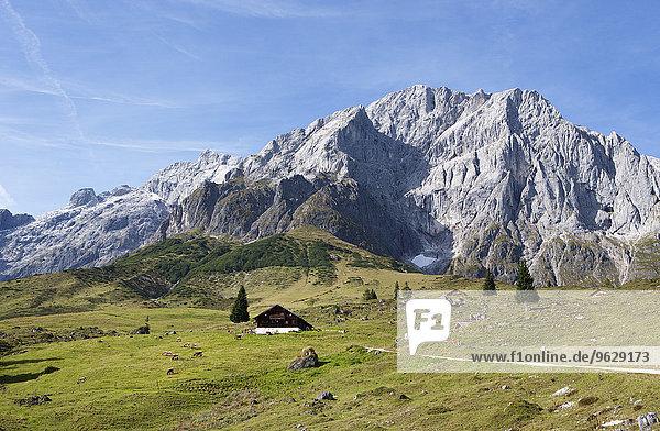 Austria  Salzburg State  Muehlbach  Hochkoenig mountain massif  Alpine cabin