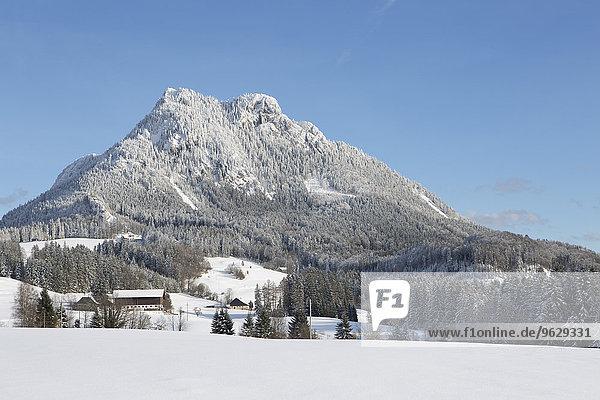 Österreich  Oberösterreich    Salzkammergut  Fuschl am See  Blick auf den Schober im Winter
