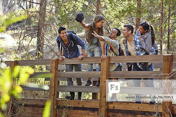 Fünf junge erwachsene Freunde  die auf einer Holzbrücke im Wald herumalbern  Los Angeles  Kalifornien  USA