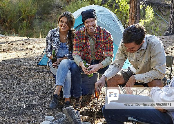 Four young adult friends sitting by campfire in forest  Los Angeles  California  USA