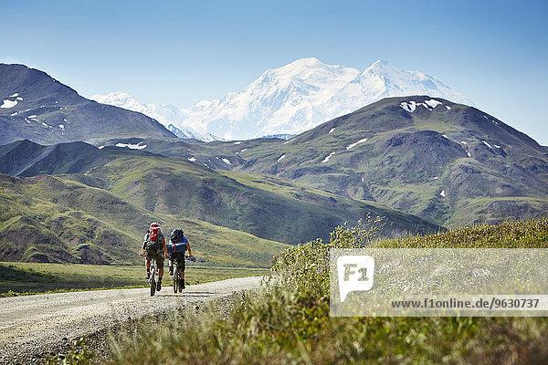 Mittleres erwachsenes Paar auf der Landstraße  Mount McKinley  Denali Nationalpark  Alaska  USA