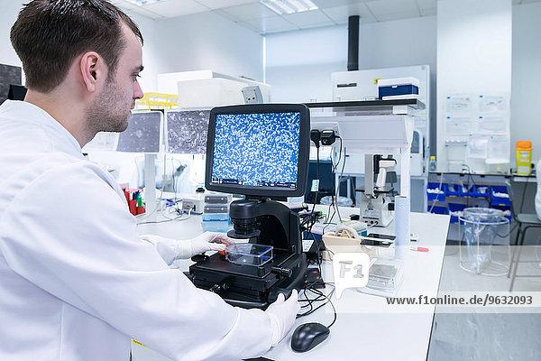 Krebsforschungslabor  Wissenschaftler untersucht Zellen unter dem Mikroskop am Computerbildschirm