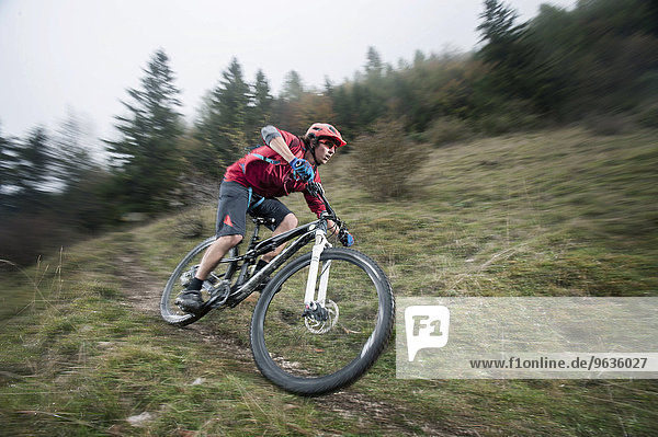 Mountain biker riding in a forest