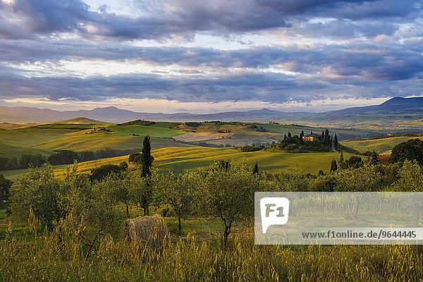Sonnenaufgang  Landschaft mit Landhaus und Zypressen  bei San Quirico d'Orcia  Val d'Orcia  Provinz Siena  Toskana  Italien  Europa