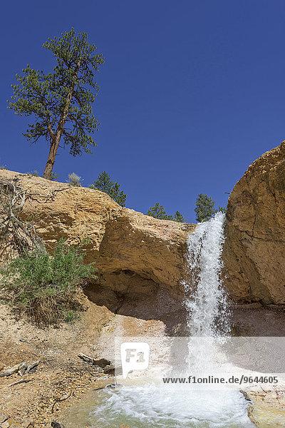 Wasserfall am Mossy Cave Trail durch einen künstlich angelegten Kanal  Bryce-Canyon-Nationalpark  Bryce  Utah  USA  Nordamerika