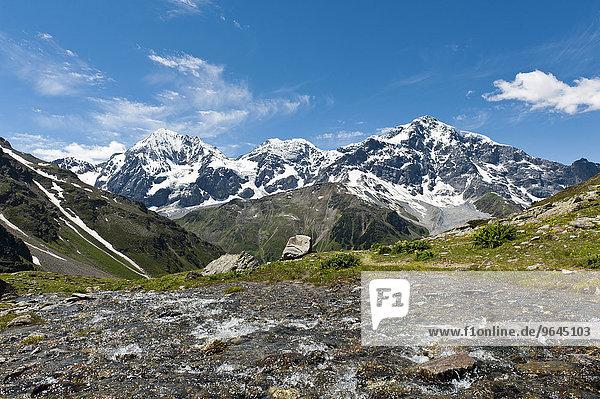 Gipfel der Königspitze  Il Gran Zebru  Monte Zebru und Ortler  Ortles  3905 m  Ortler-Alpen  Rosimtal  Valle di Rosim  Nationalpark Stilfser Joch  bei Sulden  Solda  Trentino-Südtirol  Italien  Europa