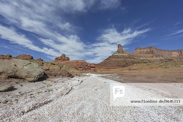 Salzablagerungen in einem ausgetrockneten Flussbett  Potash Road  Moab  Utah  USA  Nordamerika