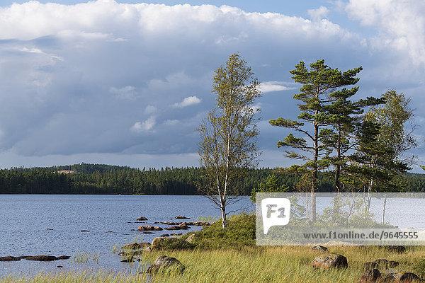 See Skärvsjö  Åsenhöga  Gnosjö  Jönköpings län  Schweden  Europa