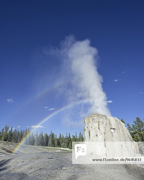 Lone Star Geysir  Yellowstone-Nationalpark  Wyoming  USA  Nordamerika
