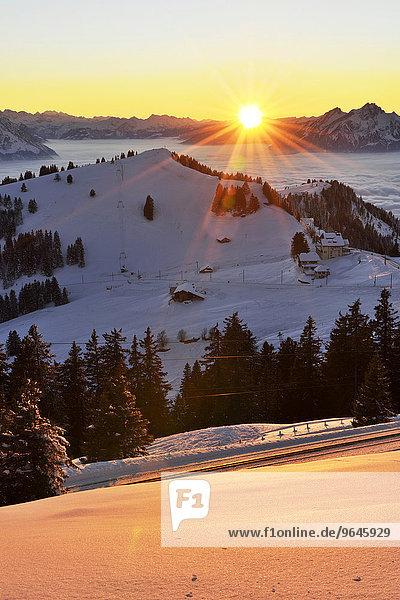 Sonnenuntergang vom Rigi Kulm mit Ausblick auf den Rigi Staffel und Pilatus  Kanton Schwyz  Schweiz  Europa