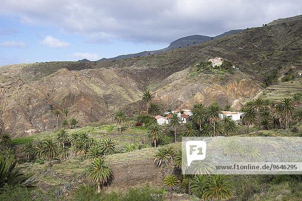 Alojera  Gemeinde Vallehermoso  La Gomera  Kanarische Inseln  Spanien  Europa