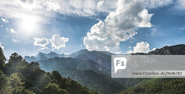 Kiefern-bewachsene felsige Landschaft mit Wolkenhimmel  Col de Bavella  Bavella-Massiv  Korsika  Frankreich  Europa