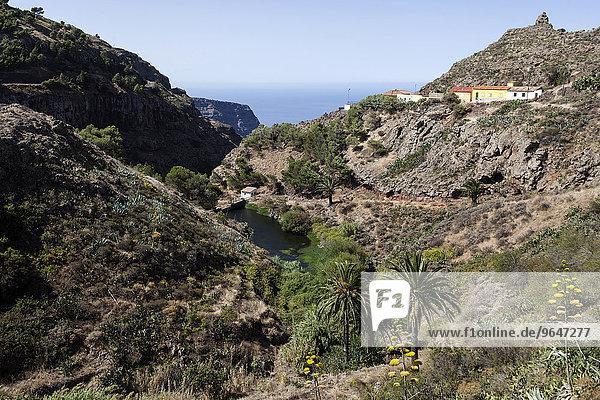 Ausblick zum Meer  von Arure  La Gomera  Kanarische Inseln  Spanien  Europa