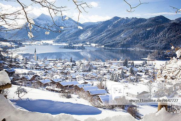 Ausblick auf Schliersee im Winter  hinten die Brecherspitze  Schliersee  Oberbayern  Bayern  Deutschland  Europa