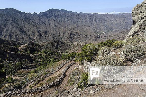 Ausblick vom Wanderweg zwischen dem Mirador Degollada de Paraza und La Laja  La Gomera  Kanarische Inseln  Spanien  Europa