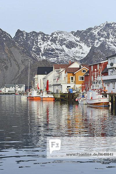 Fischerdorf mit Booten im Hafenbecken vor schneebedeckten Bergen der Insel Austvågøy  Henningsvær  Lofoten  Nordland  Norwegen  Europa