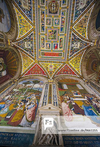 Libreria Piccolomini  ornate ceiling  Siena Cathedral  Siena  Tuscany  Italy  Europe