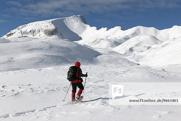 Schneeschuhgeher vor dem Massiv des Monte Sella di Sennes  2787m  Naturpark Fanes-Sennes-Prags  Pragser Dolomiten  Italien  Europa