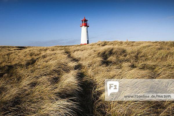 Leuchtturm List West am Ellenbogen  Sylt  Nordfriesland  Schleswig-Holstein  Deutschland  Europa