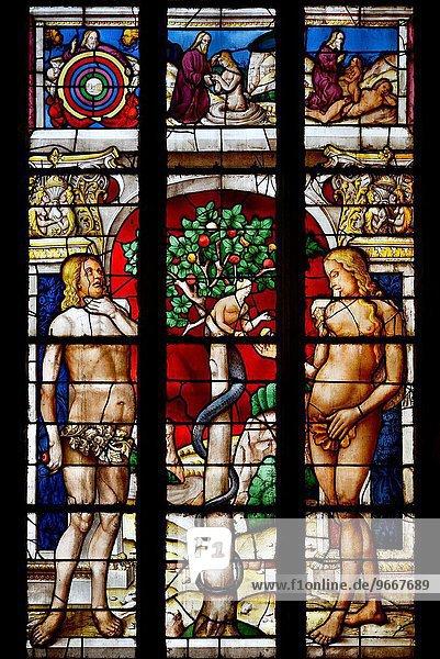 zwischen inmitten mitten zeigen Frankreich Fenster Glas Ende Schmutzfleck Kathedrale Produktion Heiligtum schreiben UNESCO-Welterbe Jungfrau Maria Madonna Abend Gers einstellen