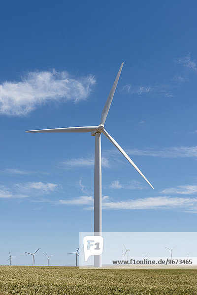 Windturbine Windrad Windräder grün Feld