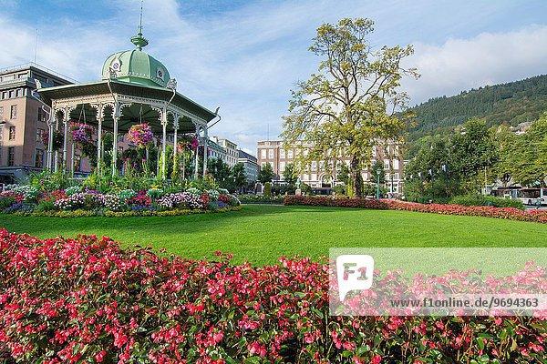 Farbaufnahme Farbe Blume Gebäude Hintergrund Musik Norwegen Aussichtspunkt Klassisches Konzert Klassik Bergen Innenstadt