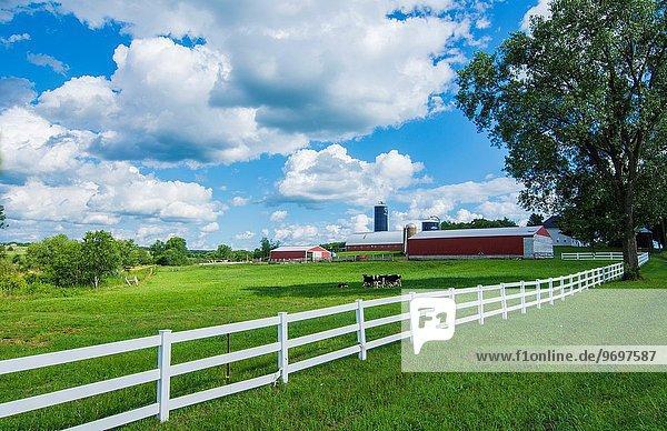 Außenaufnahme Wolke grün Landwirtschaft Bauernhof Hof Höfe weiß Pflanze Scheune Zaun rot Wisconsin