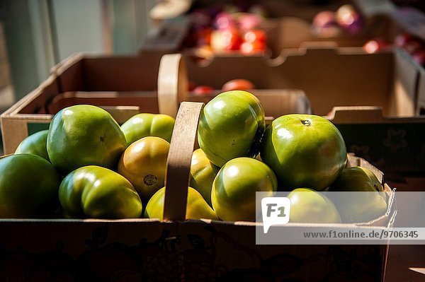 zeigen Hafen Großstadt innerhalb Bauer Tomate Kanada Markt Quebec