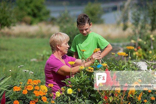 blühen Sommer Großmutter Enkelsohn Garten