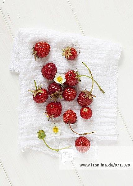 Frisch gepflückte Erdbeeren und Erdbeerblüten