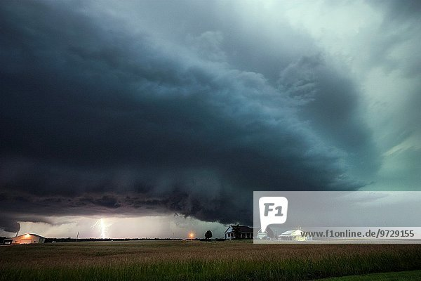 hinter Wolke Regal Kansas Blitz