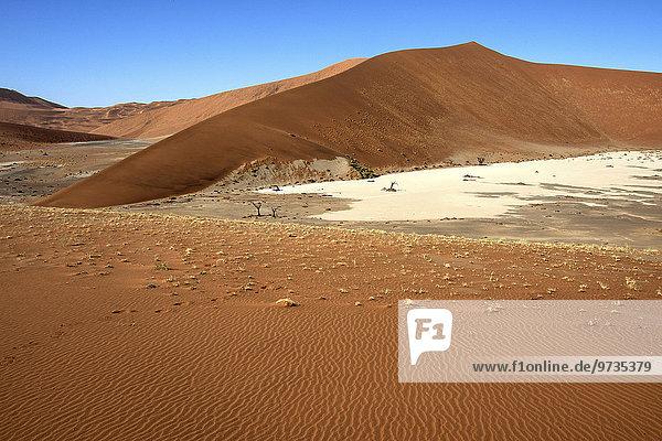 Sanddünen  Hidden Vlei  Namib-Wüste  Namib Naukluft Park  Namibia  Afrika