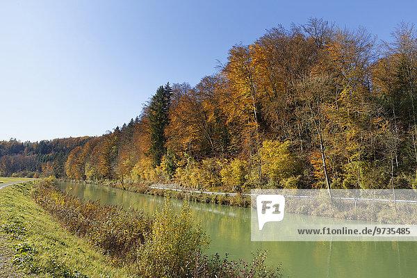 Isar-Kanal  Pullach  Oberbayern  Bayern  Deutschland  Europa