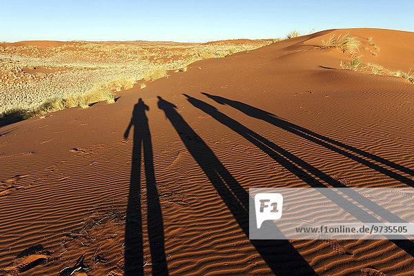 Fotografen werfen Schatten auf eine Sanddüne  Morgenlicht  Namibia  Afrika