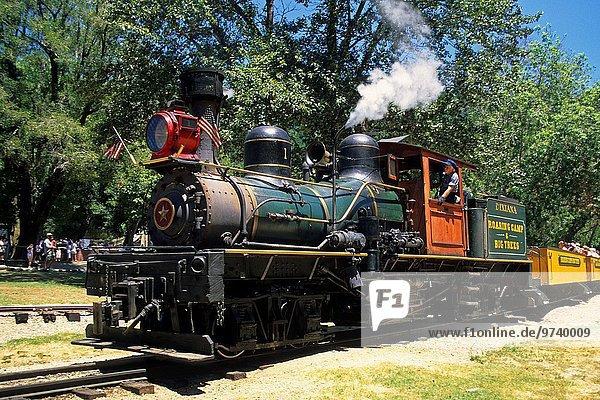 Steam train pulling into Roaring Camp  Felton  Santa Cruz County  CALIFORNIA.