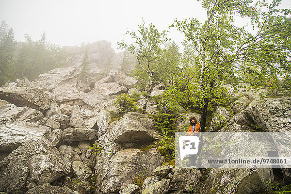 stehend Europäer Felsen Baum Hügel unterhalb wandern