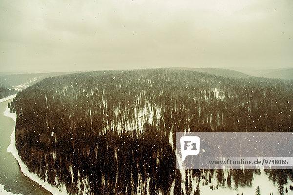 Schnee Wald Ansicht Luftbild Fernsehantenne