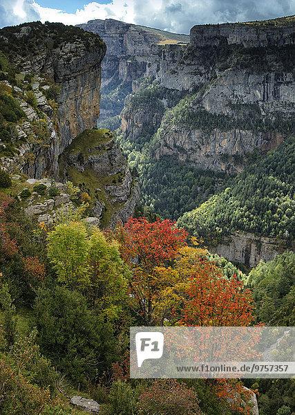 Spanien  Nationalpark Ordesa  Anisclo-Schlucht