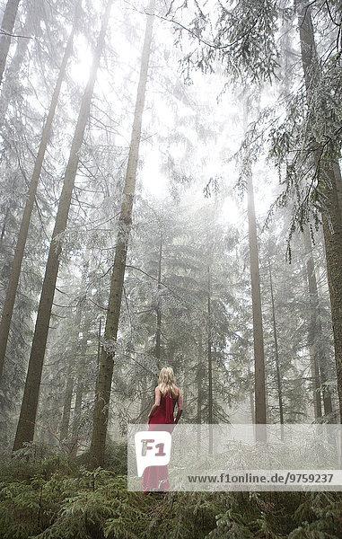 Österreich  Frau im Abendkleid und allein im Wald stehend