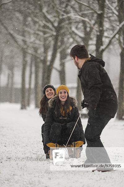Drei Freunde beim Schlittenfahren im Winter