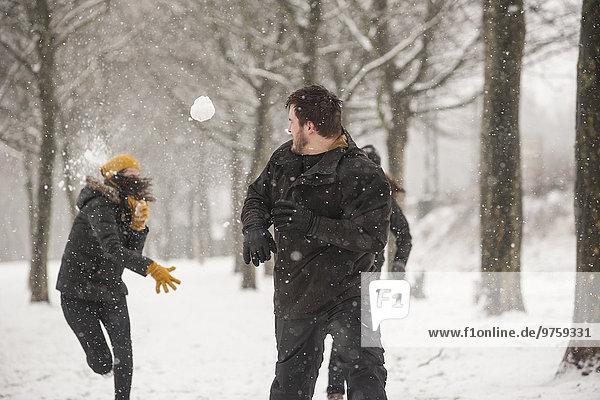 Drei Freunde bei einer Schneeballschlacht