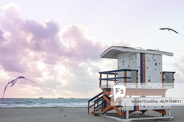Lifeguard hut  Miami  Florida  USA