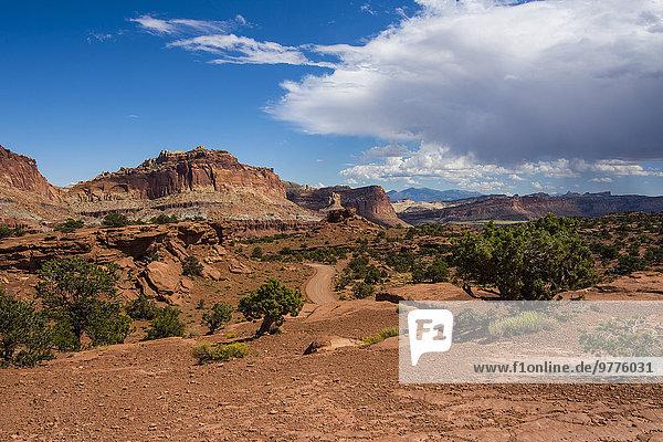 Nationalpark Amerika Steilküste Nordamerika rot Verbindung Riff Sandstein Utah